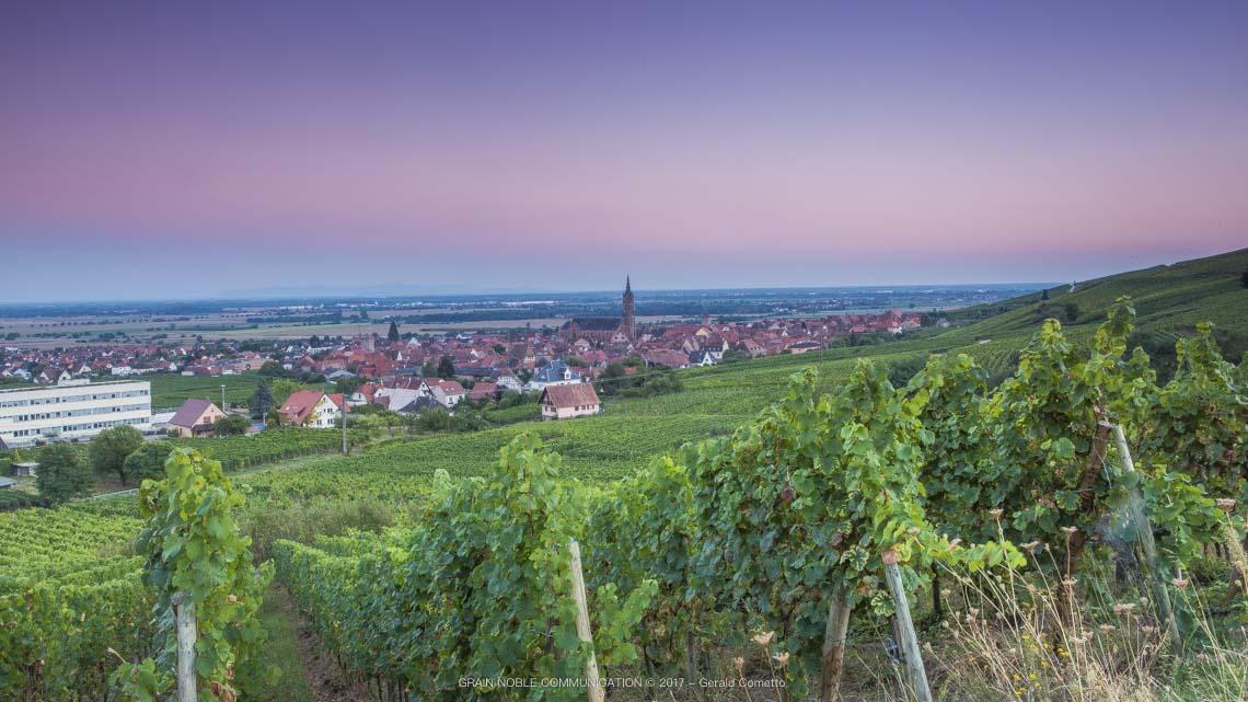 photo depuis une vigne avec vue sur un village médiéval