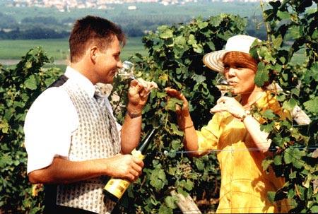 un couple dans les vignes en train de déguster un verre vin